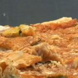 Tomatillo and Onion Tart Recipe