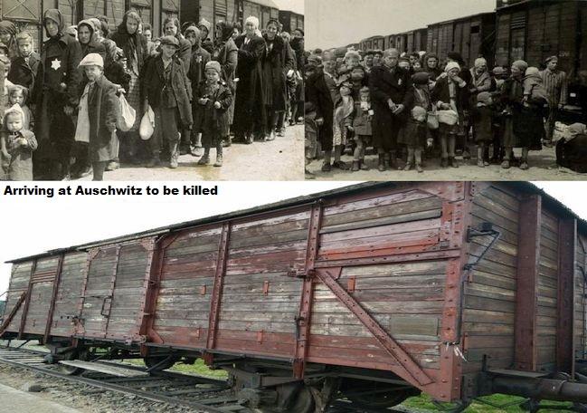 Train_Auschwitz