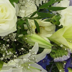 Mitford Marriages: Pamela Mitford and Derek Jackson