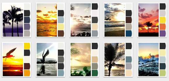 Decor: A Palm Tree Palette