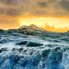 Florida Murder – The Sea Waif