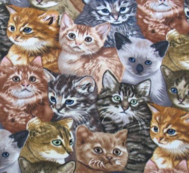2. Kitten_fleece