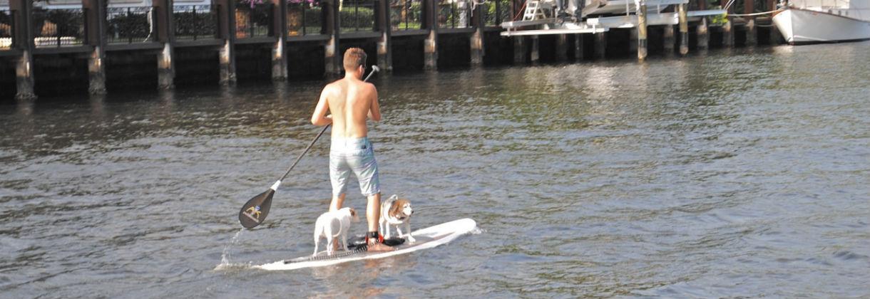 paddleboard vacation