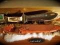 nimrod-11-3595-1984-1_edited-1
