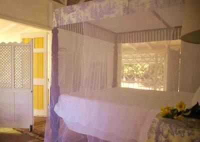 Romance on Nevis