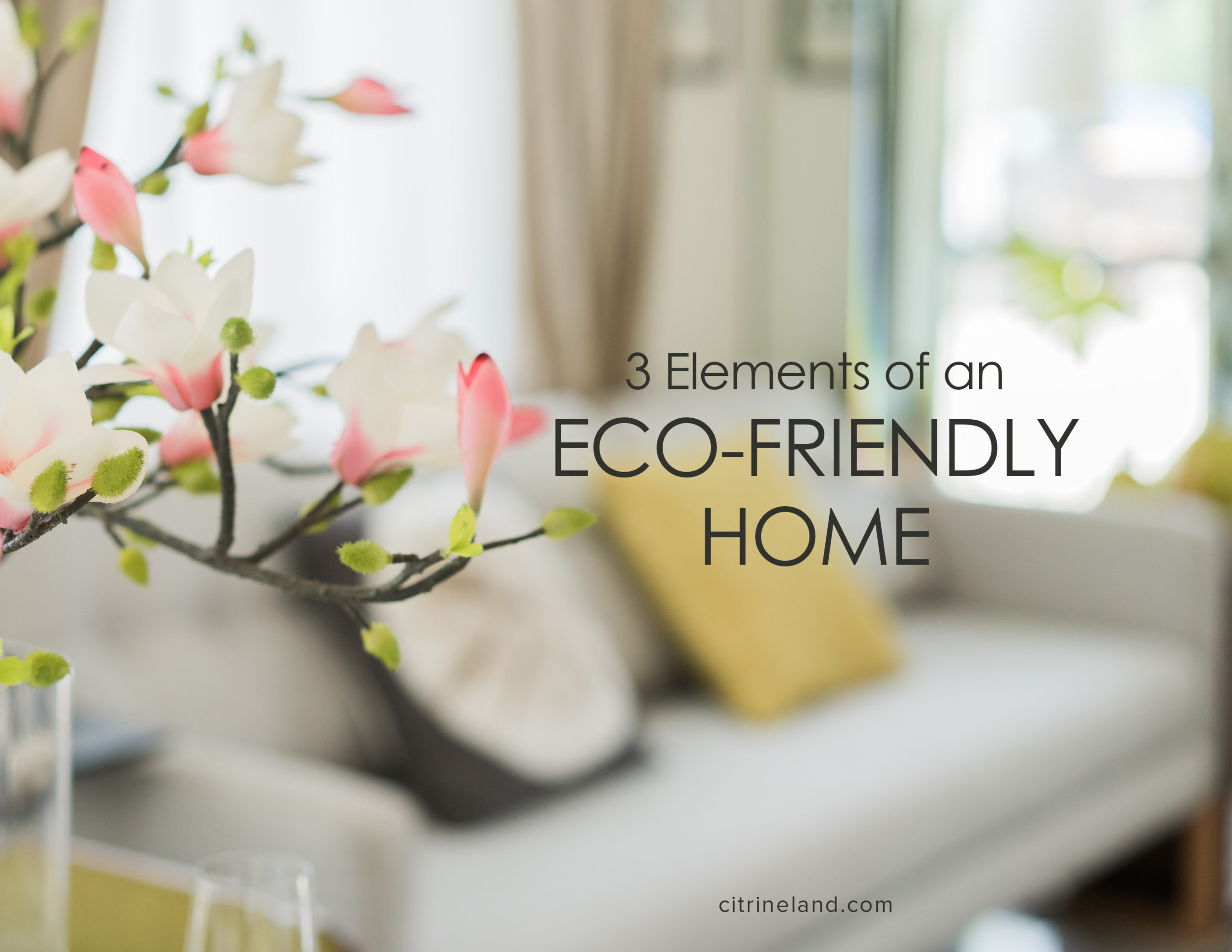 Looking For An Eco-Friendly Home? 3 Elements You Need To Consider