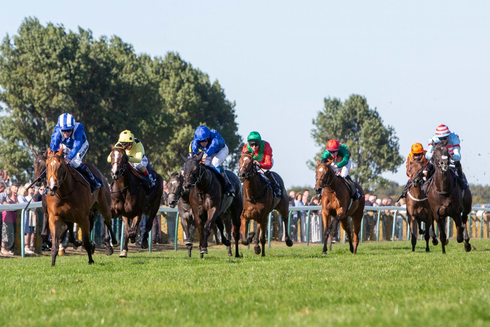 Horse Racing Photography - Great Yarmouth Races