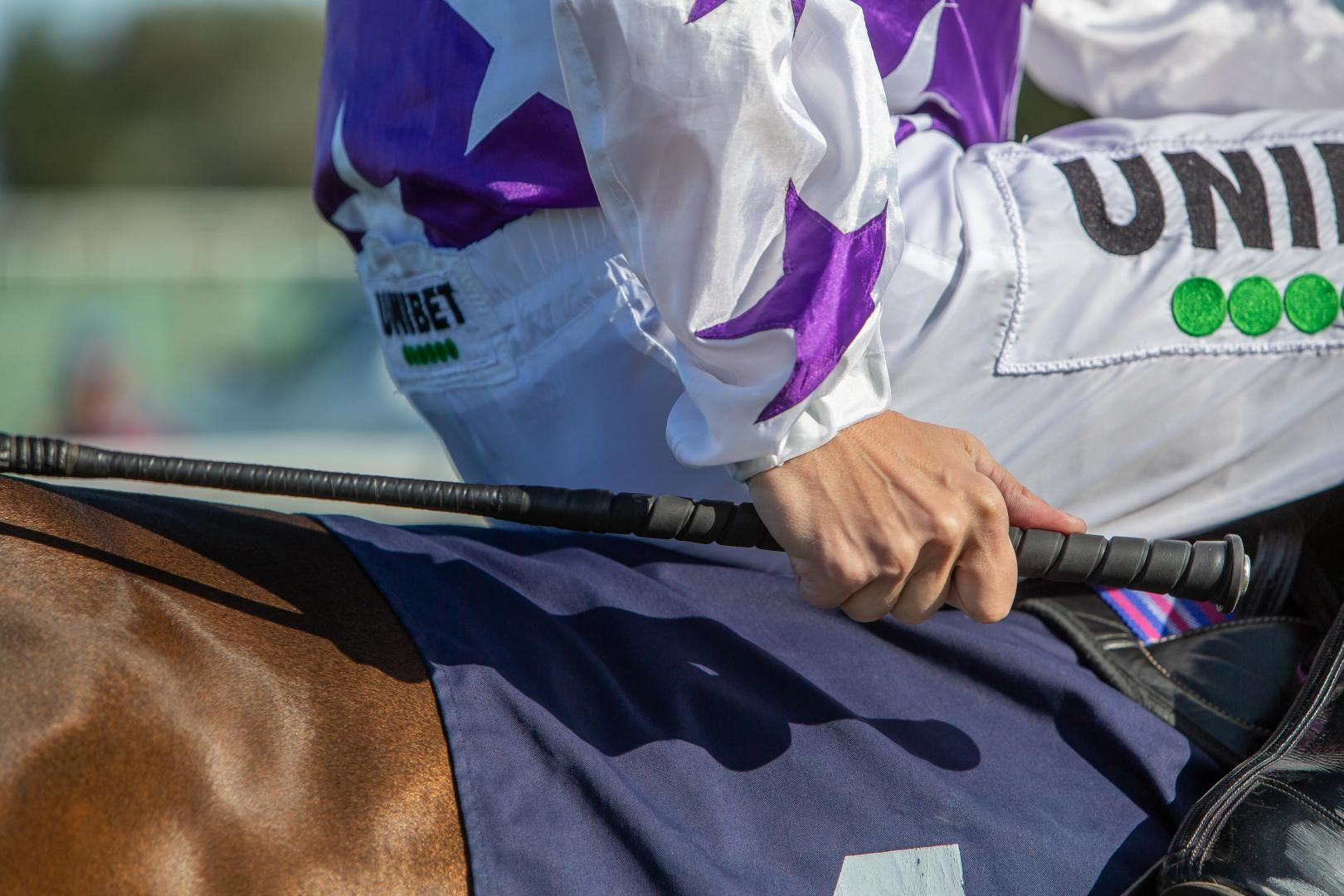 Great Yarmouth Horse Racing Photography