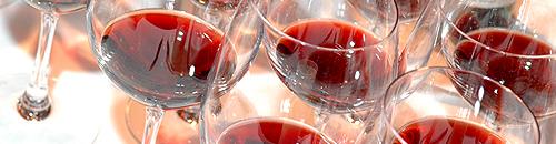winesummit_banner2