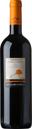 Arnaldo Caprai Anima Umbra Rosso (Sangiovese Merlot 2013 blend on shelves November 28)