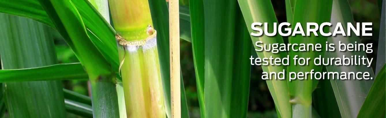 #FordFarmToCar Sugarcane DoTheDaniel