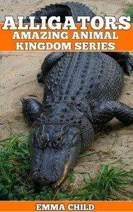 ALLIGATORS-Fun-Facts-and-Amazing-Photos-of-Animals-in-Nature-Amazing-Animal-Kingdom-Series-Childrens-Books