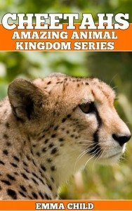 CHEETAHS-Fun-Facts-and-Amazing-Photos-of-Animals-in-Nature-Amazing-Animal-Kingdom-Series-Childrens-Books