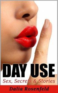 Day-Use-revision-03-version-01