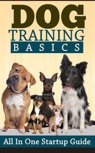 dogtrainingbasics