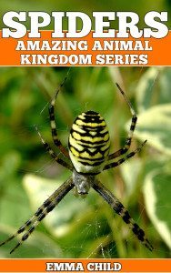 SPIDERS-Fun-Facts-and-Amazing-Photos-of-Animals-in-Nature-Amazing-Animal-Kingdom-Series-Childrens-Books