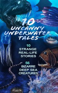 undersea-cover2-Real-Life-Stories-KL-edit-300dpi-large