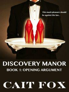 CaitFox-DiscoveryManor-Book1-600x800