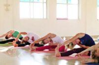 FREE: Hatha Yoga für Lehrer und Praktiker: Ein umfassender Leitfaden: Ein umfassender Leitfaden zur ganzheitlichen Sequenzierung by Ram Jain and Kalyani Hauswirth Jain