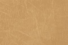 Gold-CR504