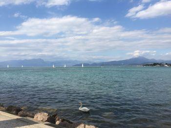 italiainpiega-pieghe-meravigliose-itinerari-moto-pianura-padana-lungo-il-fiume-mincio-lagodigarda2