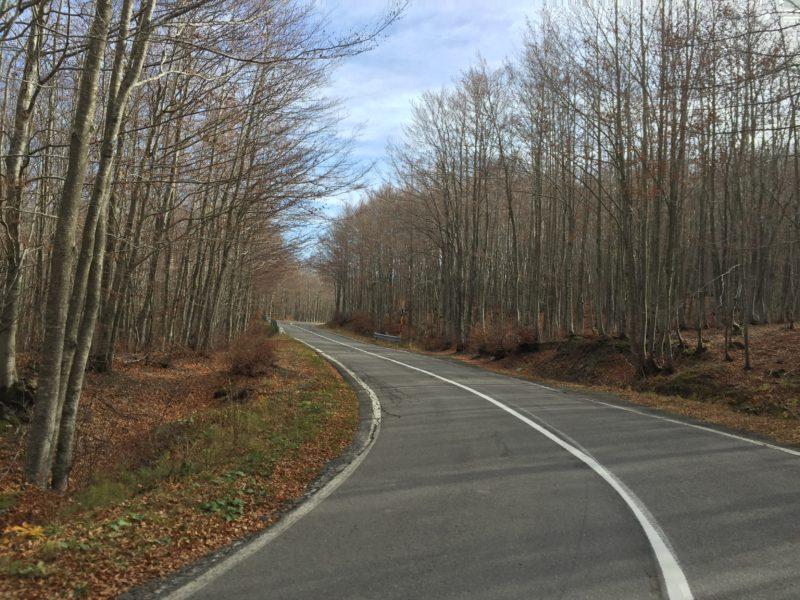 italiainpiega-pieghe meravigliose-itinerari moto nord italia-passo delle radici-andata SP486 4
