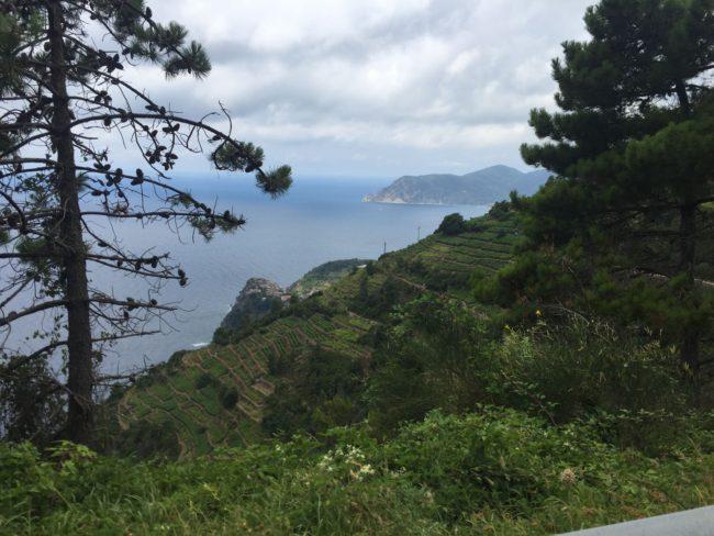 italiainpiega-pieghe meravigliose-itinerari moto nord italia-le cinque terre-strada panoramica 3