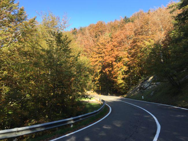 italiainpiega-pieghe meravigliose-itinerari moto centro italia-gola del furlo-foreste casentinesi