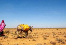 Região na Somália afetada por estiagem severa. Mudanças climáticas vão potencializar migrações internas, apontam organismos internacionais