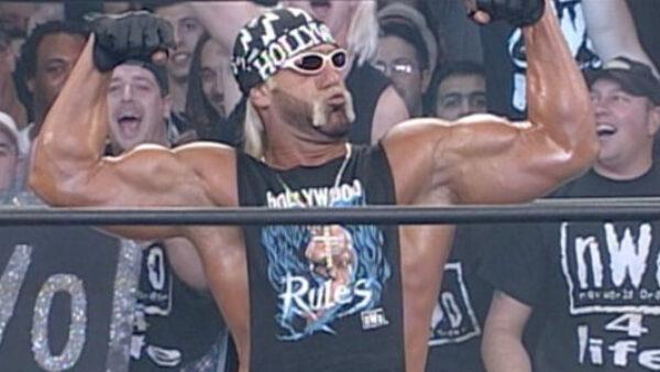 Hulk Hogan as Hollywood Hogan