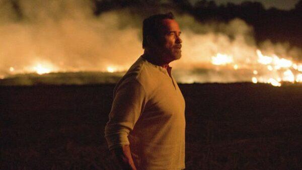 Arnold Schwarzenegger in Maggie 2015