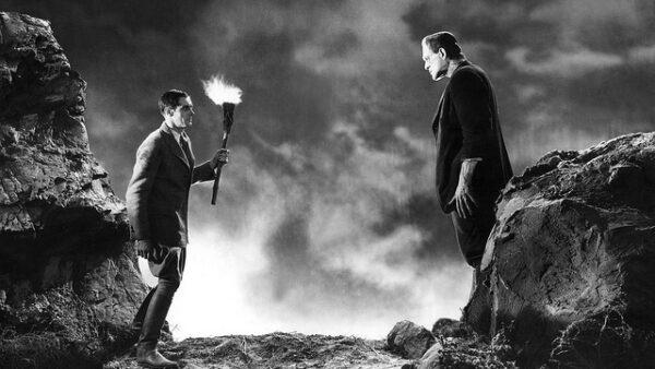 Frankenstein 1931 Movie