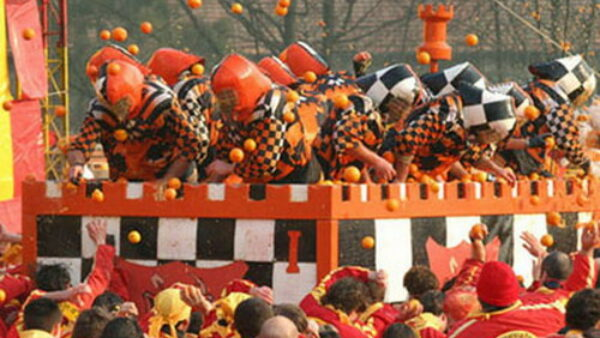 Bizarre Competition Battle of the Oranges