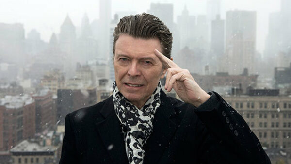 David Bowie Musician