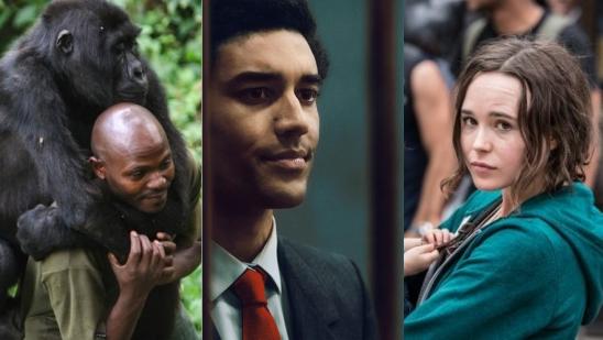 15 Best Netflix Exclusives That You Shouldn't Miss