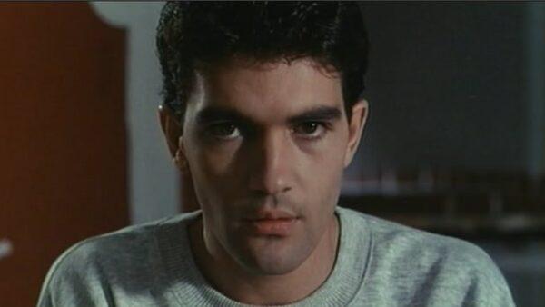 Matador 1986