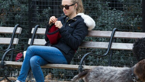 Amanda Seyfried Knitting