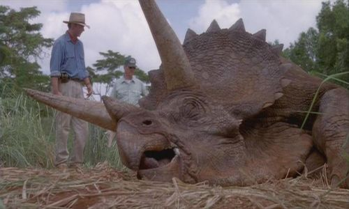 Triceratops Never Existed