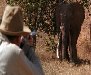 Films to Inspire Real Life African Adventures