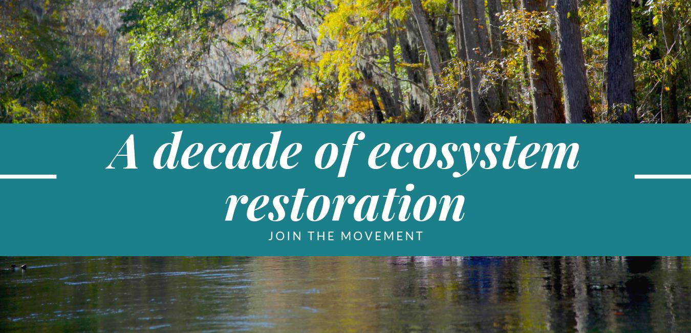 A decade of ecosystem restoration