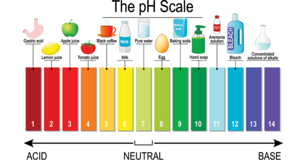 This image shows that more acidic things have a lower pH and more basic things have a higher pH.