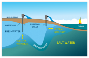 This image on Walker in the Water shows how lateral and vertical saltwater intrusion occur.