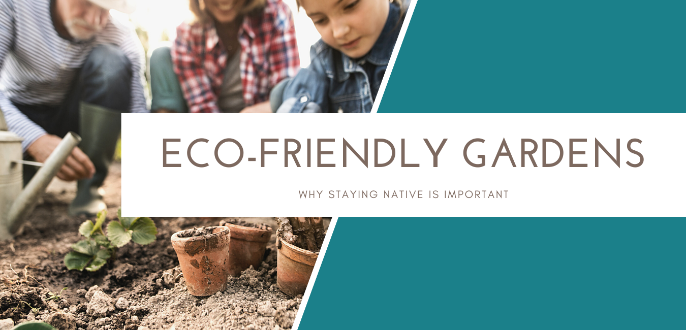 eco-friendly gardens