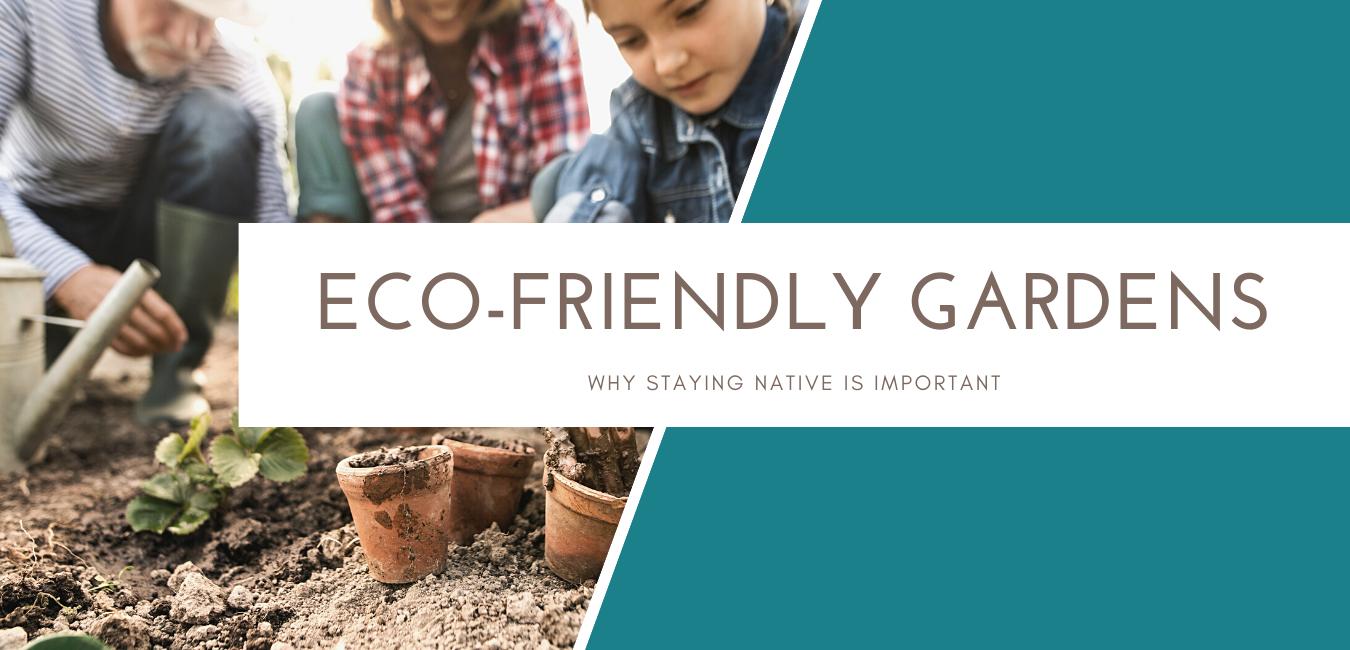 Eco-Friendly Garden: Stay Native