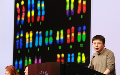 """Genome Editing: The Quest for """"Crisper"""" Cells, Babies, and Smarter Transplants"""