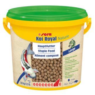 koi royal large