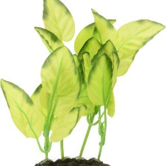 Planta Seda S 1