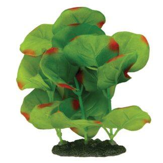 Planta Seda S 2