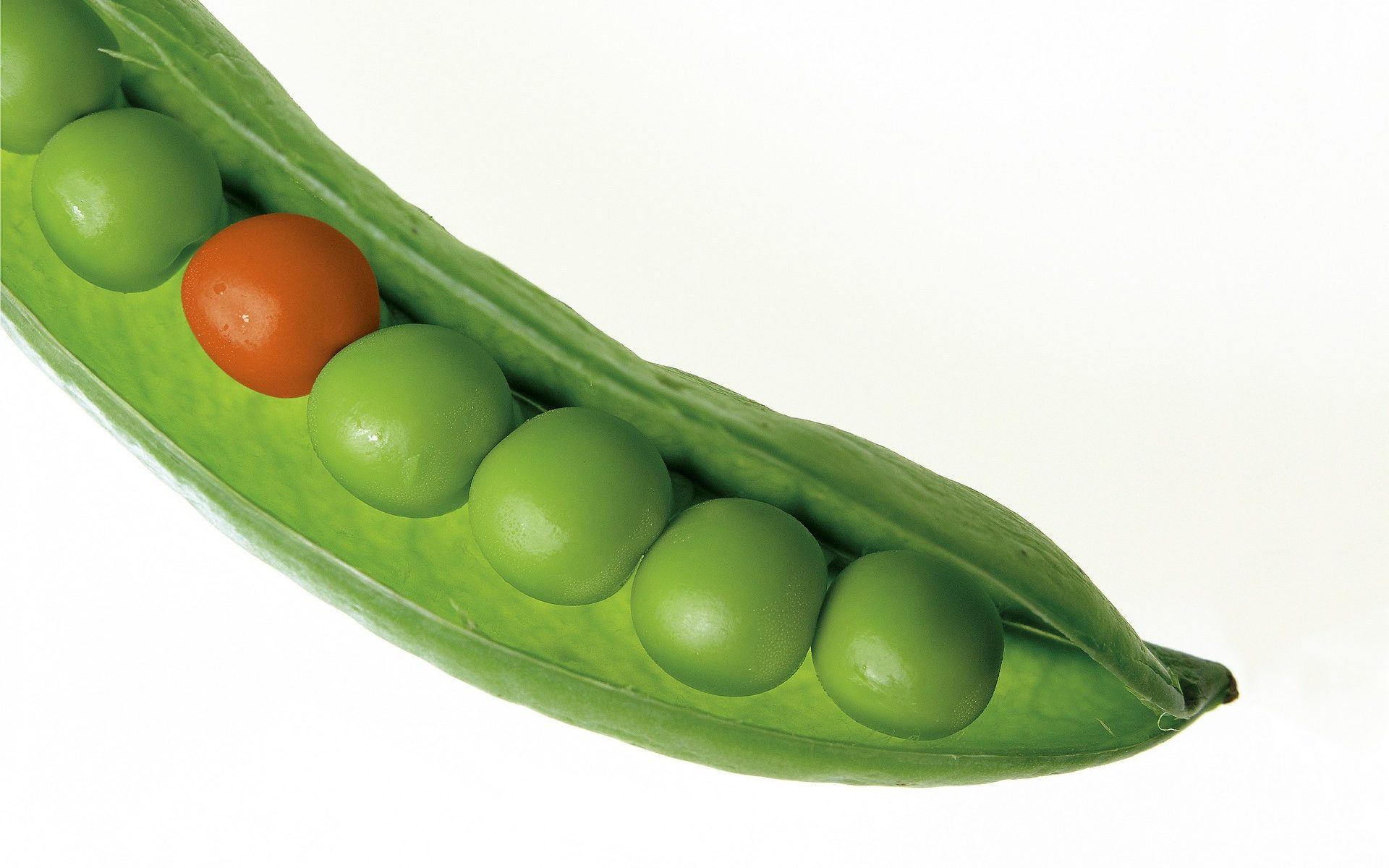 Pea pod with one red pea and the rest green. Why the red pea?