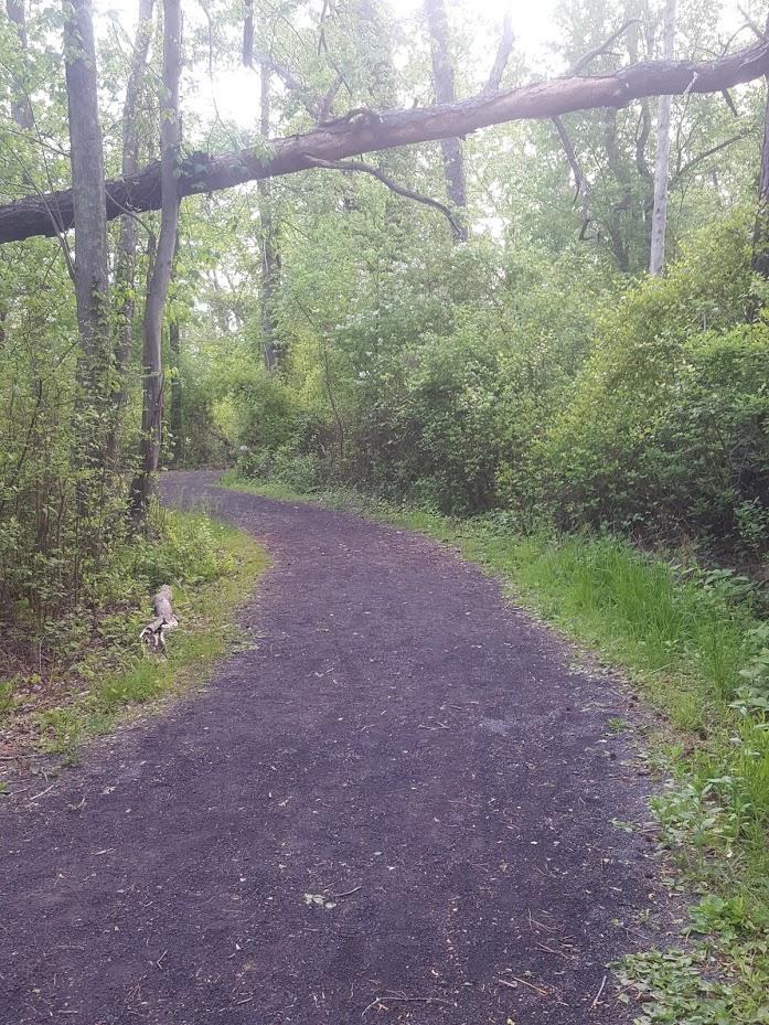 A path goes round a corner. Where do we go next?